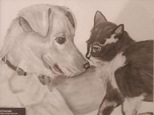 #111  Nose to nose  11x14 framed pencil drawing