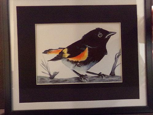 #200 Black bird 10x12 framed watercolor