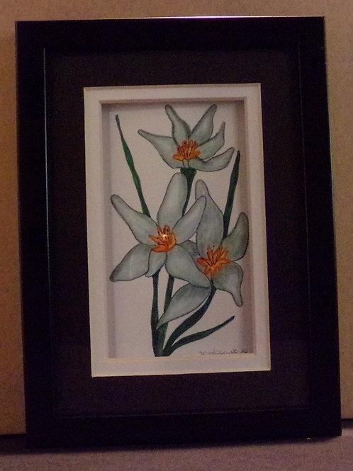 #147 white flower 5x7 framed watercolor