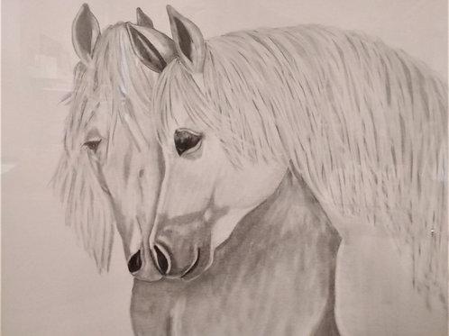 #23 Pencil drawn portrait