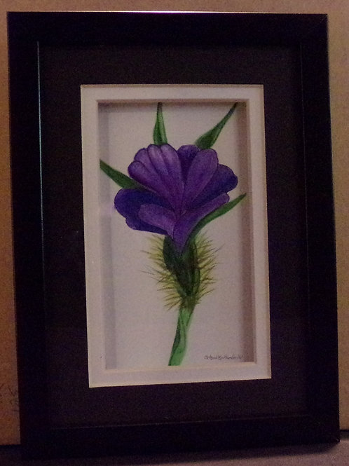 #151 purple flower 5x7 framed watercolor