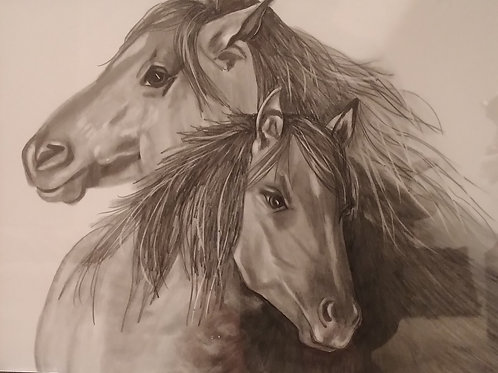 #105 2 horse  11x14 framed pencil drawing