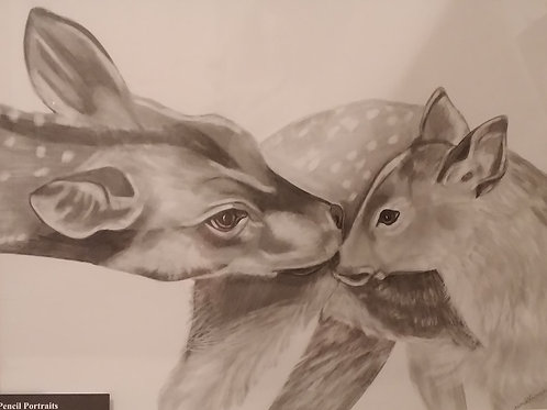 #101 Doe and fawn  11x14 framed pencil drawing
