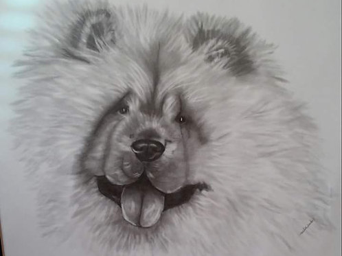 Pencil Drawn Pet Portrait from your home photo