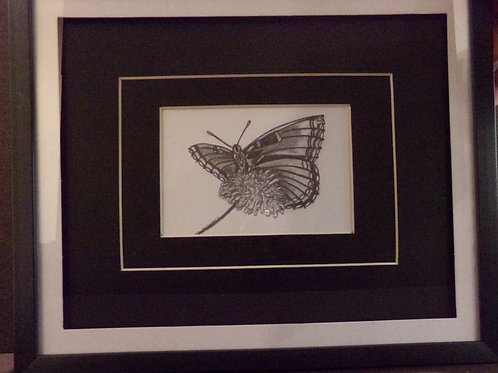 #10 Butterfly 10x12 framed pencil drawing