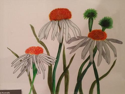 #107 Daisy's  11x14 framed watercolor