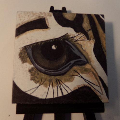 #165 zebra eye 3x3 inch with easel