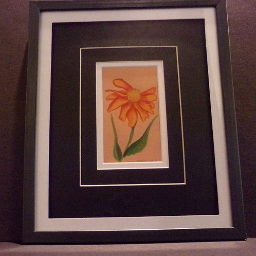 #91 orange daisey 10x12 framed watercolor
