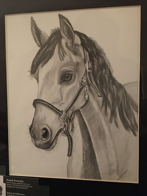 Horse with halter #58 11x14 framed pencil drawing