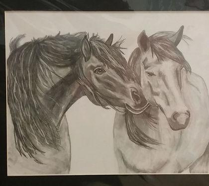 horses resized.jpg
