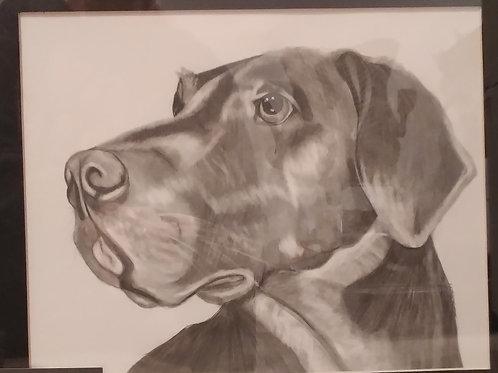 #2 Pencil drawing