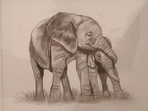 #144 Pencil drawn portrait
