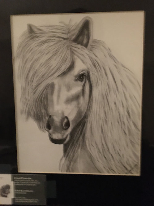 White horse #77 11x14 framed pencil drawing