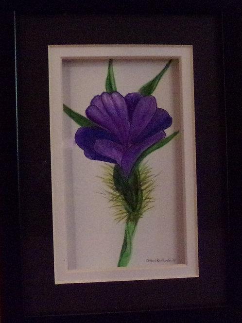 #151 purple flower 5x7 framed watercolor