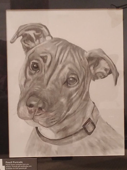 #3 pencil drawing