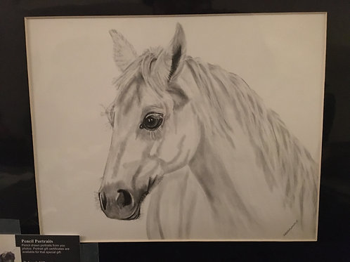 White horse #50 11x14 framed pencil drawing