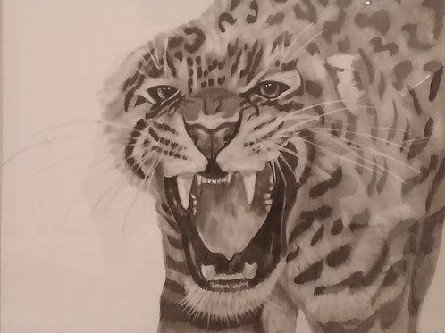 #221 pencil drawing