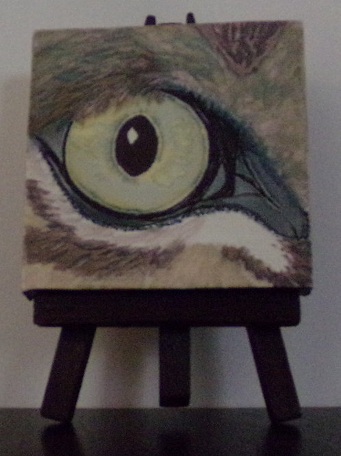 #211 owl eye 3x3 inch with easel