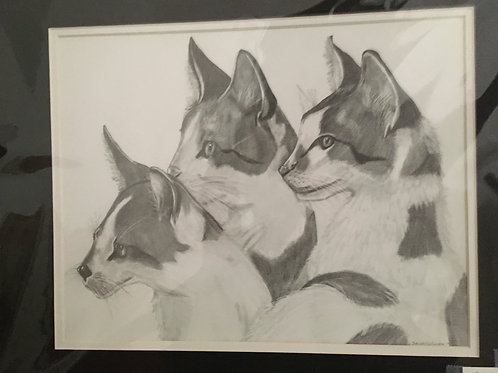 3 cats #145 16x20 framed pencil drawing