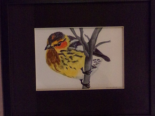 Bird on branch #201 10x12 framed watercolor