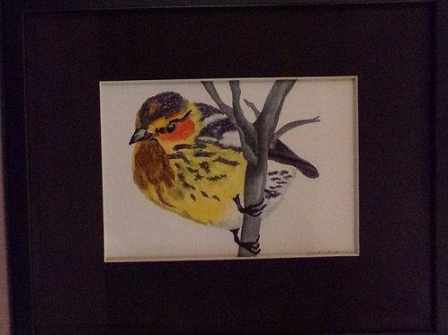 #201 Bird on branch  10x12 framed watercolor