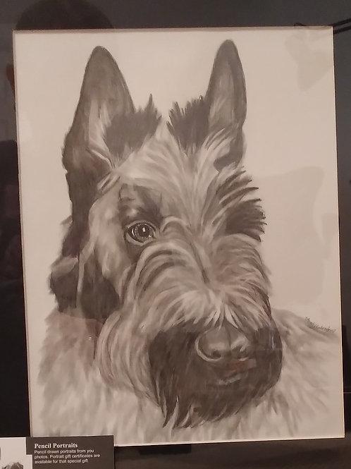 #1 pencil drawing