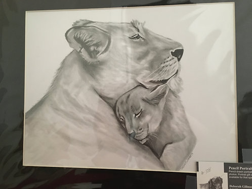 Lion and cub #108 11x14 framed pencil drawing