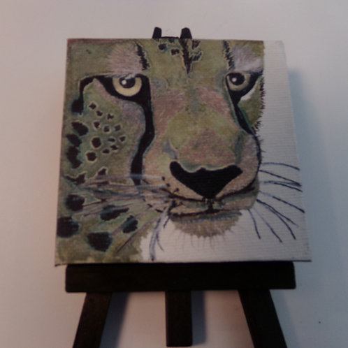 #224 old cougar 3x3 inch with easel