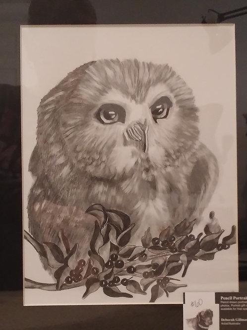 #60 pencil drawing