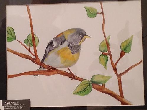 #113 Watercolor