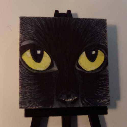 #164 black cat eyes 3x3 inch with easel