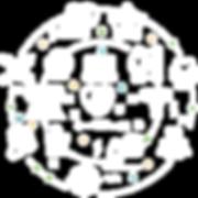 PLSV CIRCLE ICON WHITE.png
