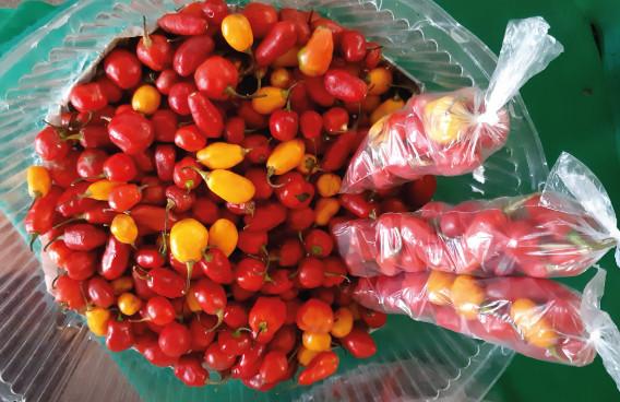 Pimentas-no-mercado.jpg