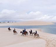 DAY-@2-The-horses.jpg