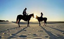 Sunset Horses Lençois