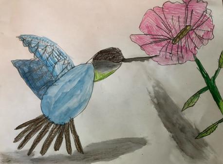 Abigail's Humming Bird