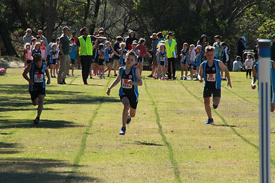 SPRINGWOOD-ATHLETICS97.jpg