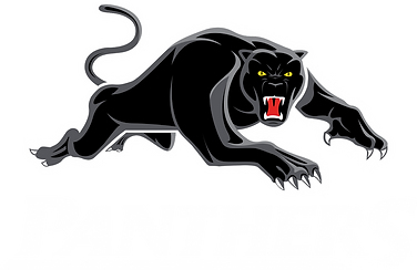 pngfind.com-panthers-png.png