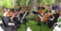 Fine Arts Strings Vargos5.JPG