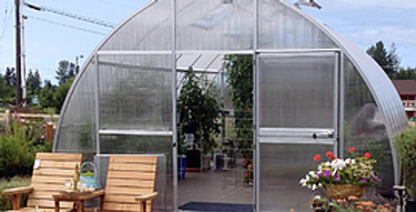 Riga IV, greenhouse
