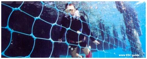 Vessel Arrest Underwater Intrusion.jpg
