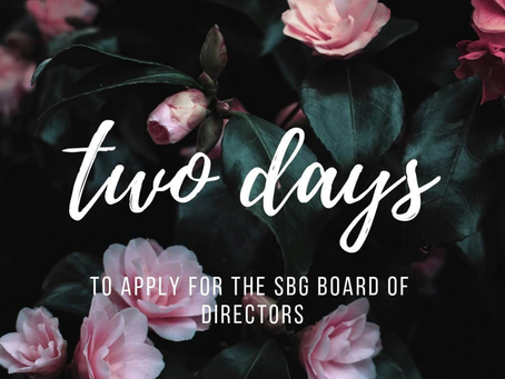 Leadership Opportunity: Apply to SBG!