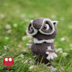 Owl Afonya