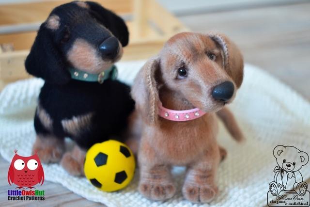 Dog Taksa