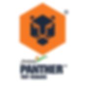 jindal-panther-steel-500x500.png