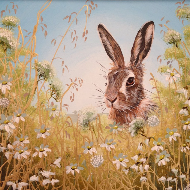 Hare II SOLD