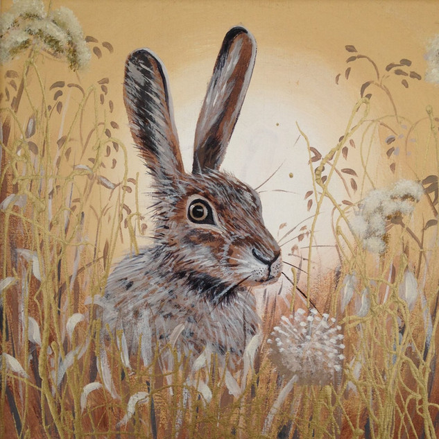 Hare I SOLD