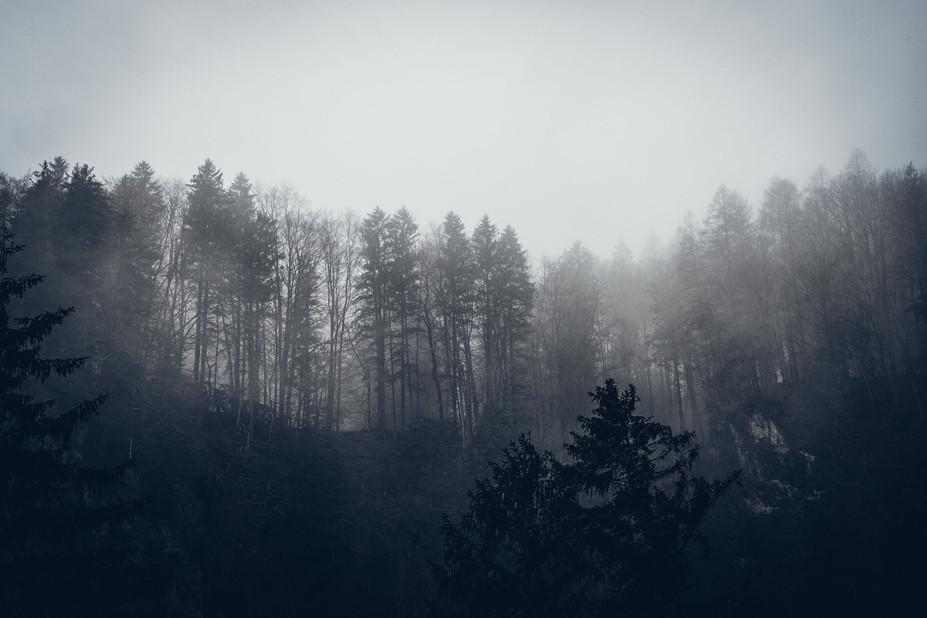 2019_01_Montafon_Neujahr_72-Bearbeitet_l
