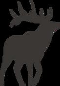 Silhouette de Deer