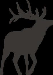 Silueta de los ciervos